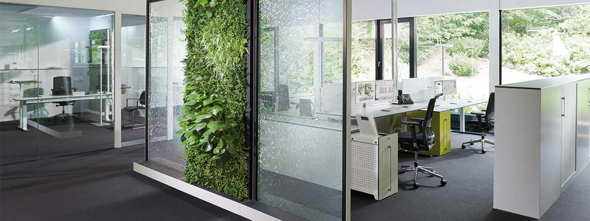 Wasser und Pflanzen im Büro für besseres Raumklima